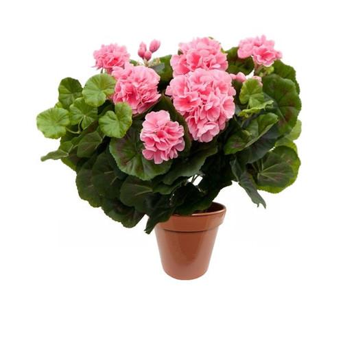 Artificial Silk Plant - Geranium (Pink)