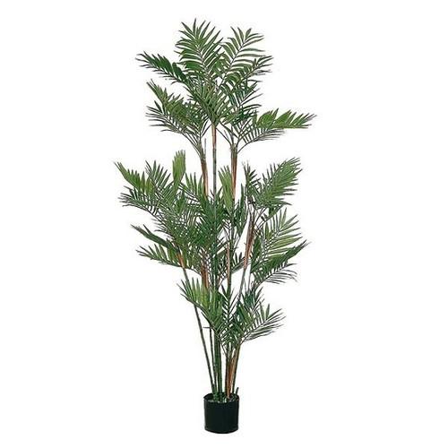 Artificial Parlour Palm Tree 176cm (5ft), Green