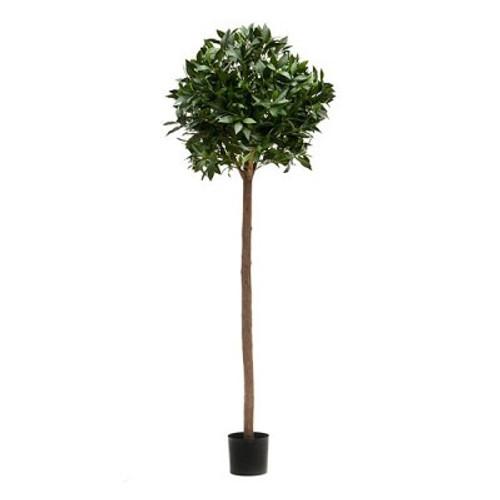 Artificial Laurel Bay Ball Tree 198cm (6ft), Green