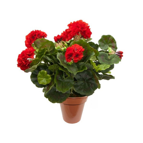 Artificial Plants - Geranium Bush (Red/Black)