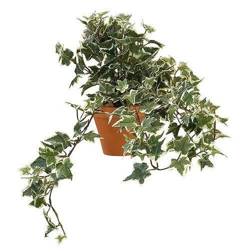 Artificial Small Sage Ivy Bush Potted, Variegated