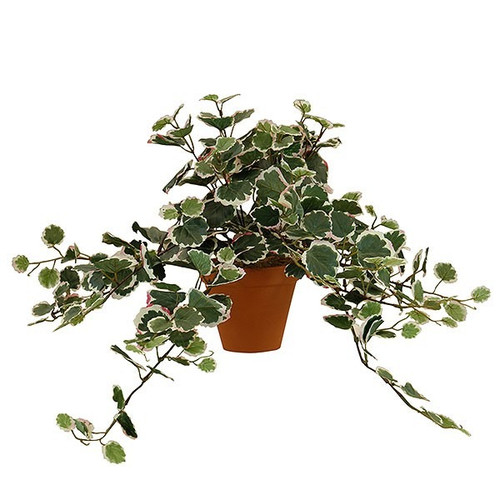 Artificial Small Ivy Bush Potted, Pink