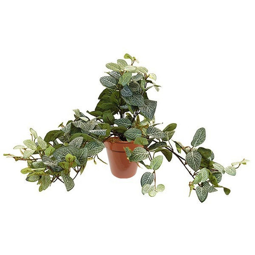 Artificial Small Fittonia Ivy Bush Potted, Veined