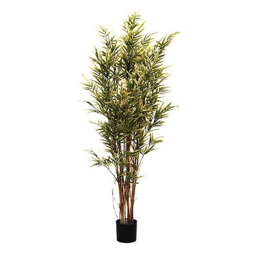 Artificial Royal Bamboo Tree (Natural Stems), 195cm (6.4ft)