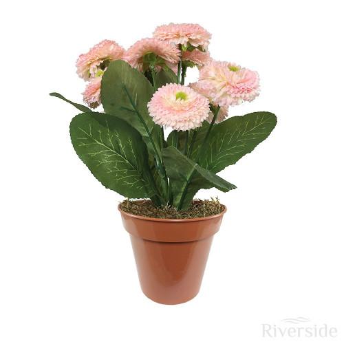 Artificial Potted Bellis Bush, Pink