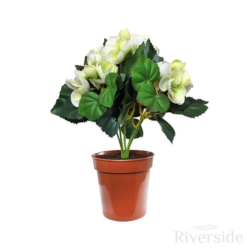 Artificial Flowers - Potted Begonia Bush, Cream