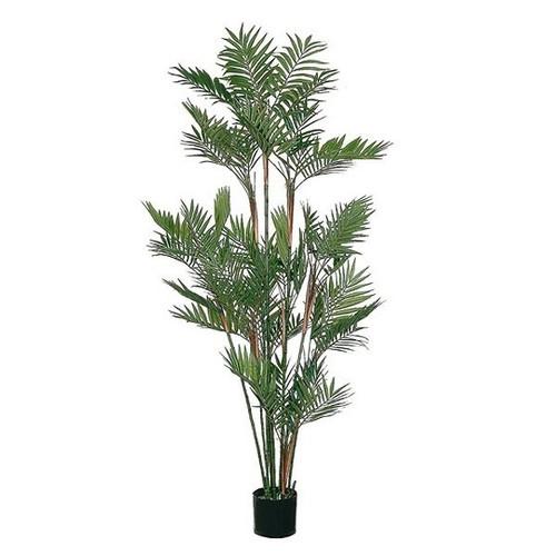 Artificial 6 foot Parlour Palm Tree Green 182cm