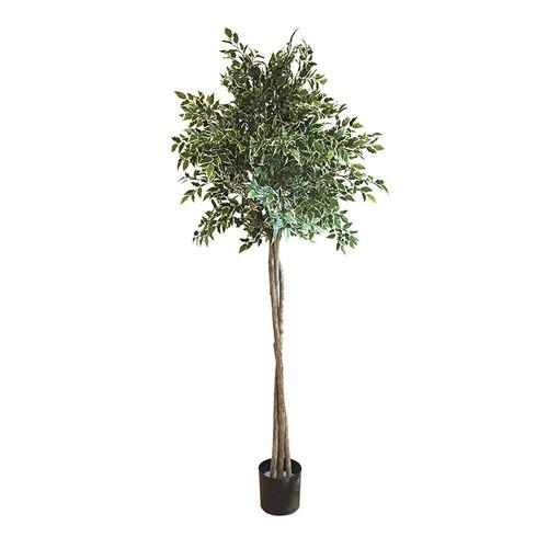 Artificial Mini Ficus Variegated Topiary Tree 160cm