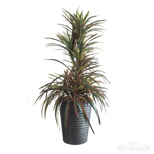Artificial Yucca Arrangement, Green And Red (Black Pot)