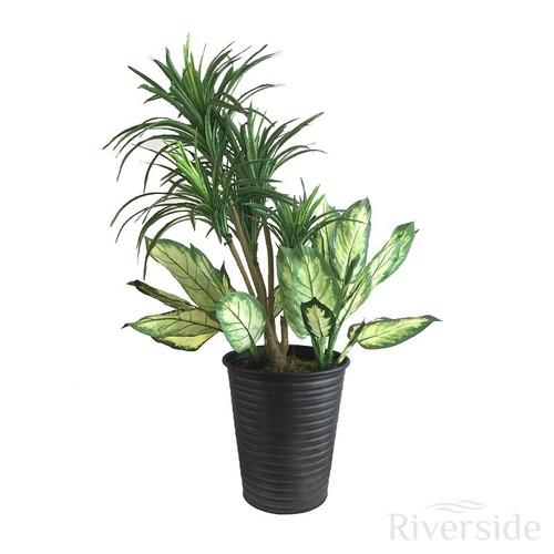 Artificial Yucca Arrangement, Dieffenbachia (Black Pot) 90cm