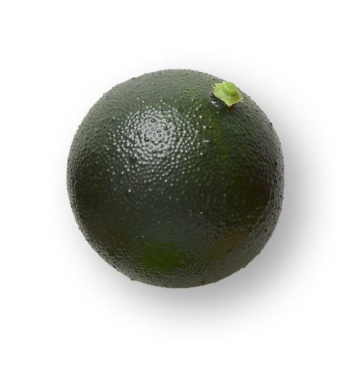 Artificial Fruit, Lime