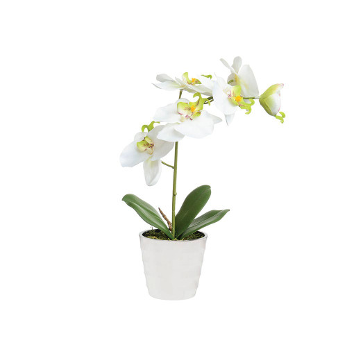 Artificial 27cm Orchid in White Pot, Cream