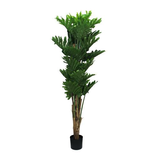 Artificial Sellum Philo Tree 178cm (5.5ft)