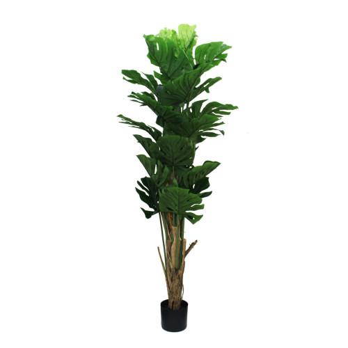 Artificial Split Philo Tree 178cm (5.5ft)
