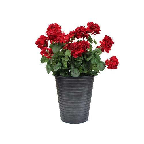 Artificial Geranium in Black Tin - Red