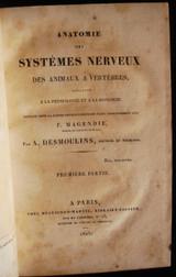 ANATOMIE DES SYSTEMES NERVEUX, Desmoulins
