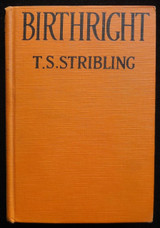 BIRTHRIGHT, by T.S. Stribling - 1922 Black Americana Civil Rights Racial Issues
