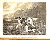 THE SPORTING MAGAZINE, Bound: v.16, by J.Pittman with Nimrod - 1825 [rebacked]