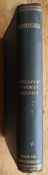 THEOCOSMIA OR THE SPIRITWORLD EXPLORED Wm Norman Wilson 1907 channeling seance