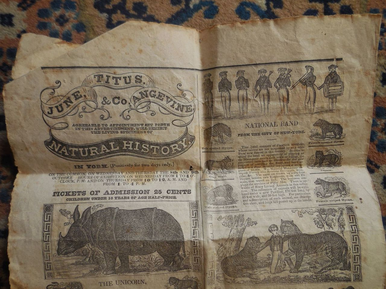 JUNE, TITUS ANGEVINE & CO, Circus Ad -1834 Flatfoots Menagerie York, PA