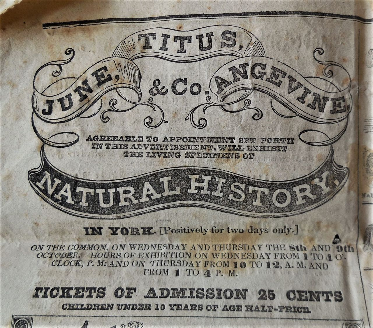 JUNE, TITUS ANGEVINE & CO, Circus Ad - 1834