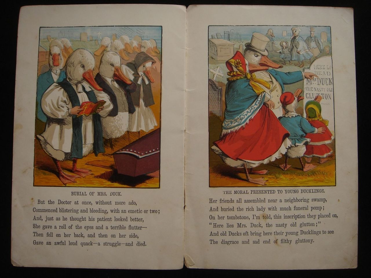 Life and Death of RICH MRS DUCK Dame Dingle Series Lithos Children's Book  1883