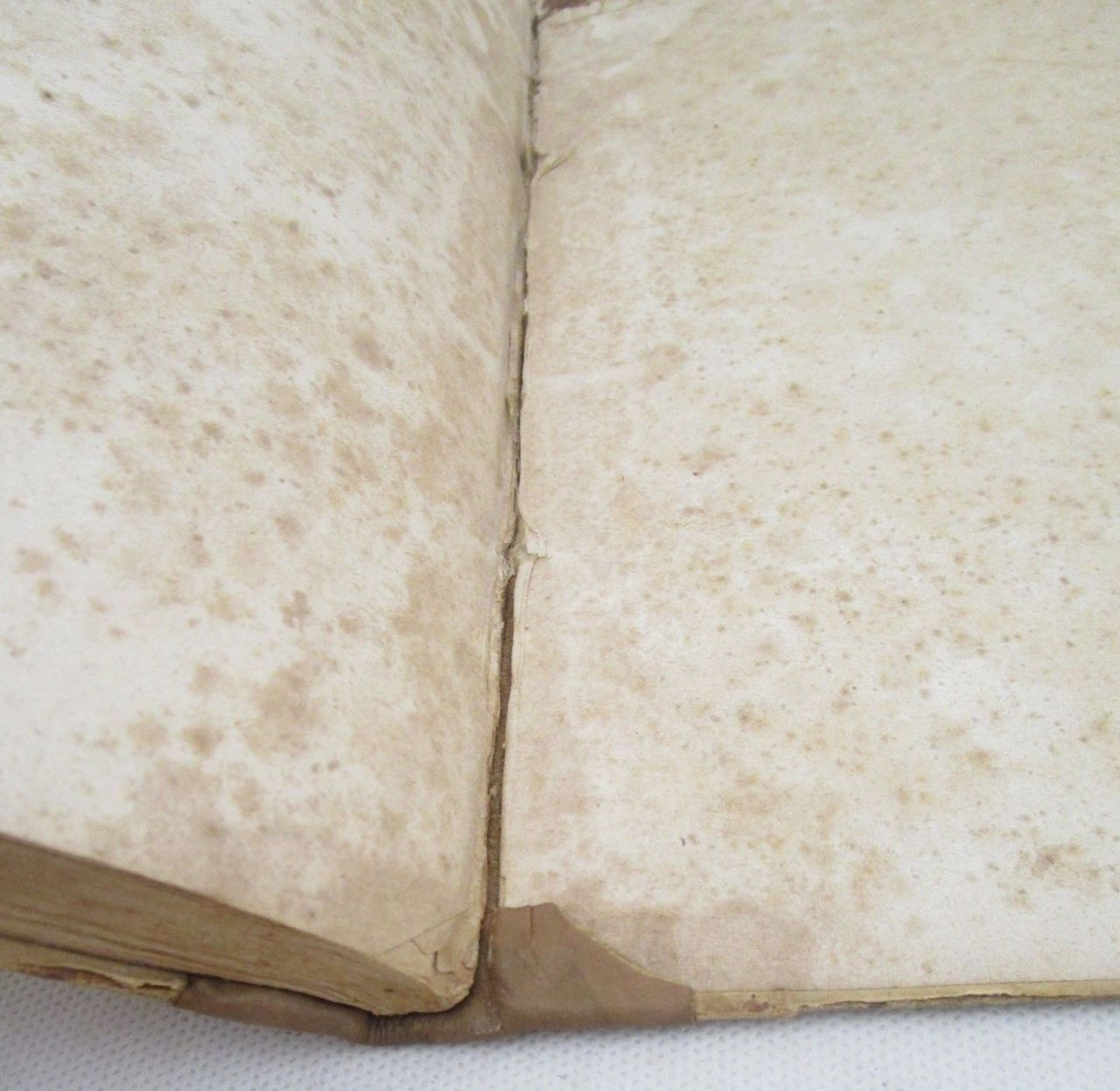 A TREATISE OF DOMESTIC MEDICINE & DOMESTIC COOKERY, by Thomas Cooper - 1824 [recased 1st Ed]