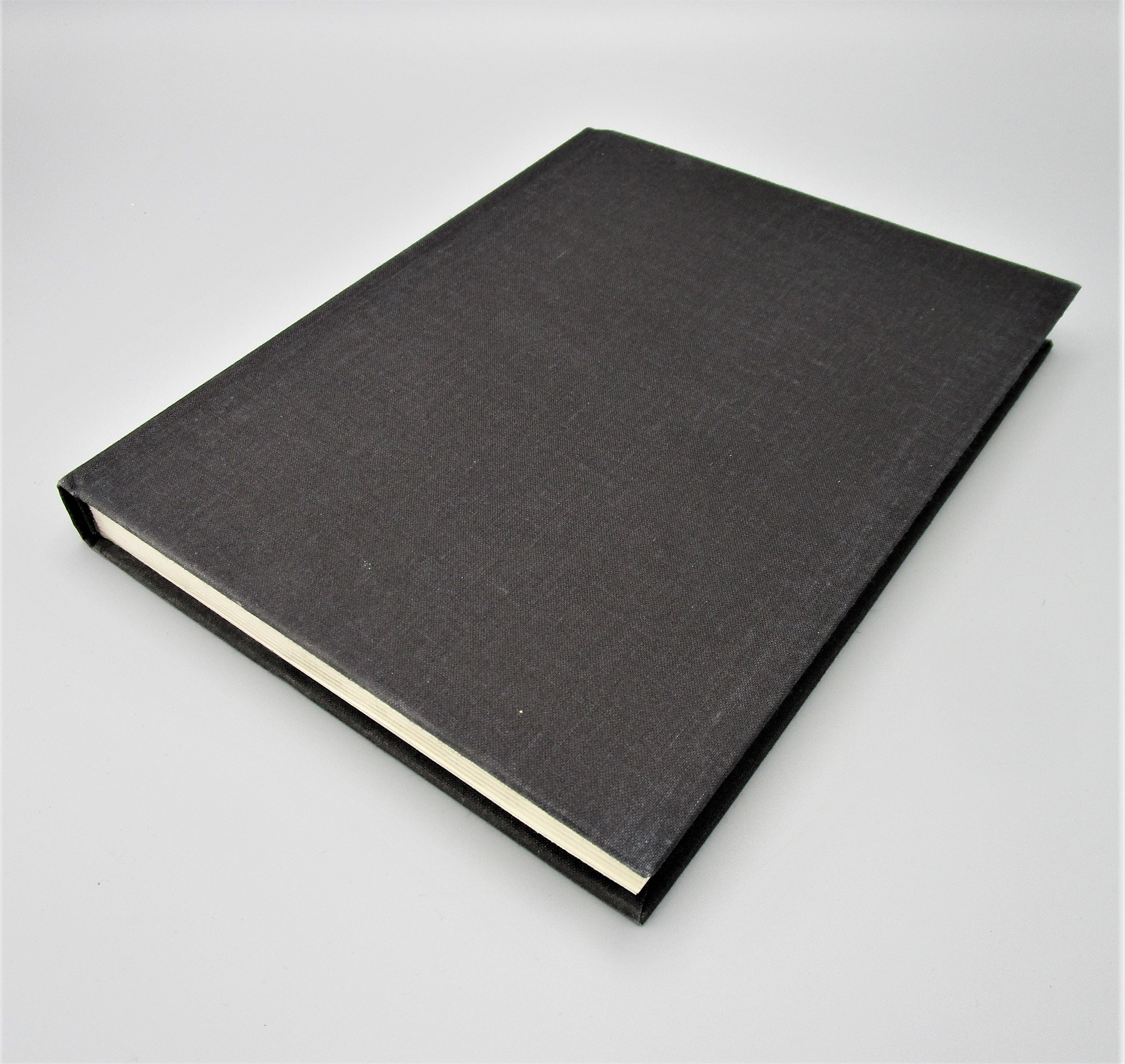 CONTINUOUS PROJECT ALTERED DAILY: THE WRITINGS OF ROBERT MORRIS, by Robert Morris - 1993