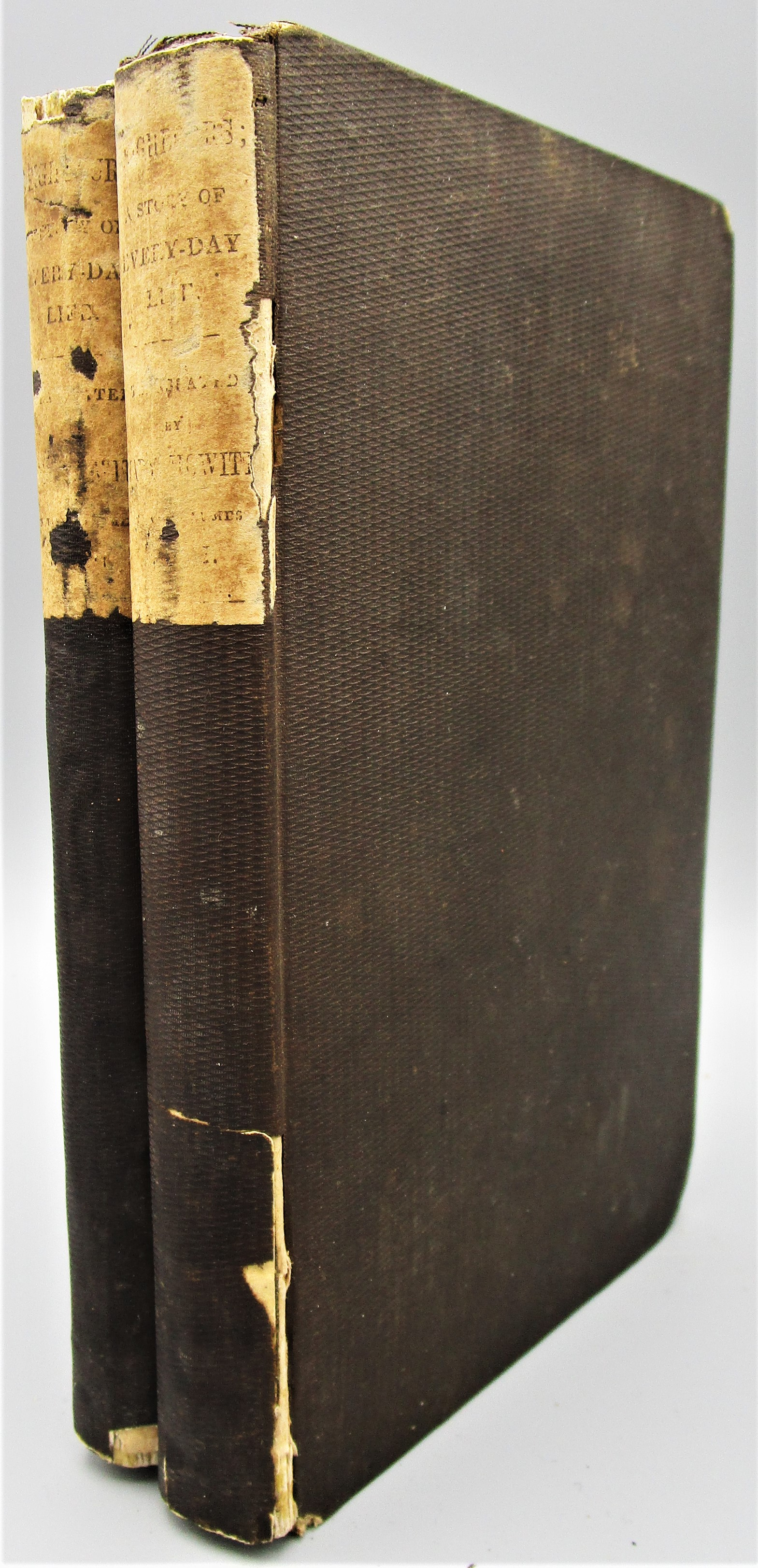 THE NEIGHBOURS: A STORY OF EVERYDAY LIFE, by Frederika Bremer - 1843 [2 Vols]