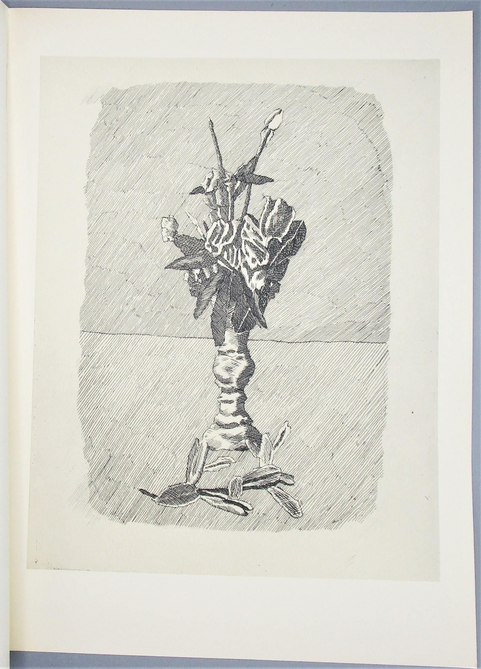 GIORGIO MORANDI OPERA GRAFICA - 1957 [Ltd Ed]