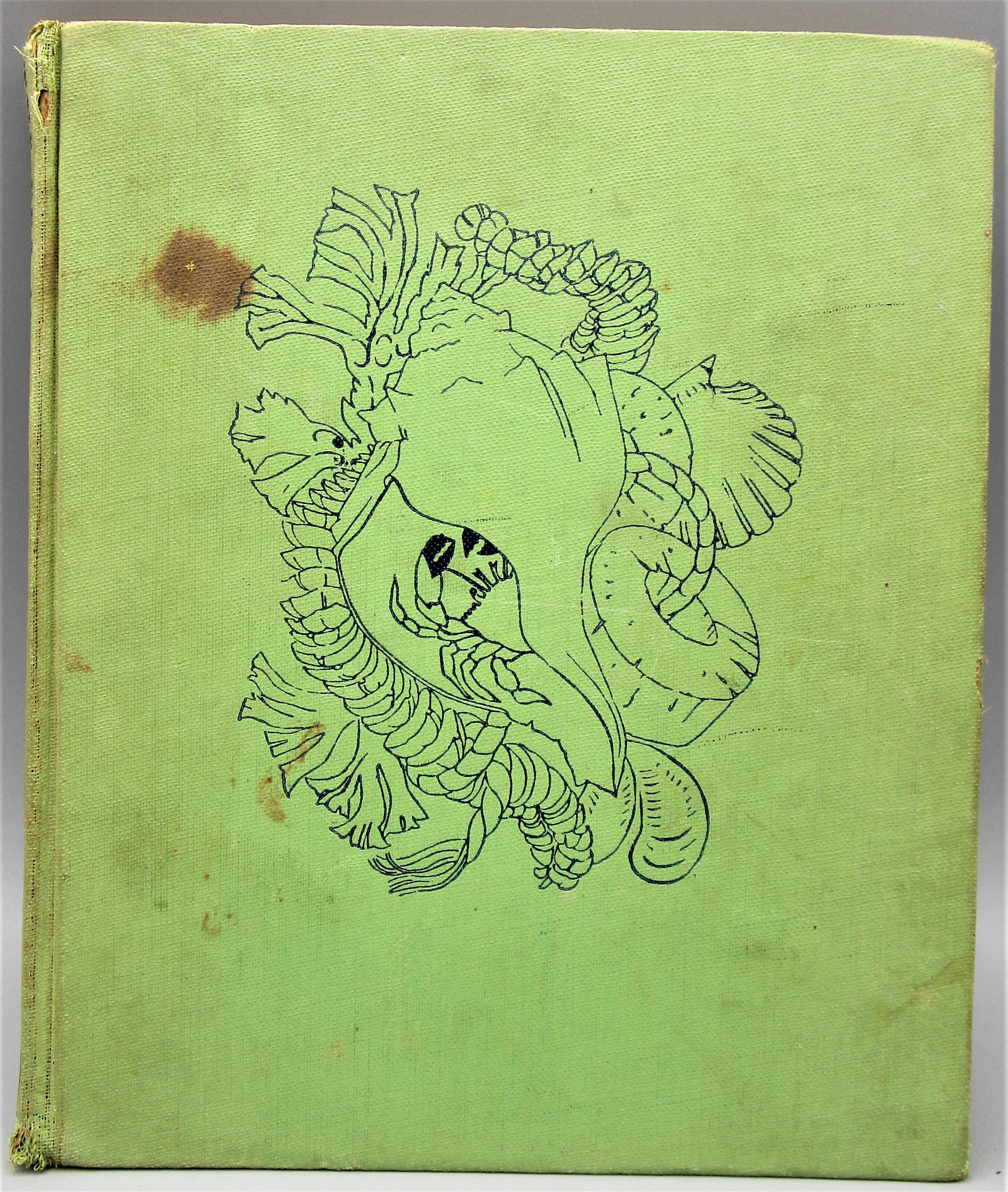 THE SEA IS ALL AROUND, by Elizabeth Enright - 1940 [1st Ed]