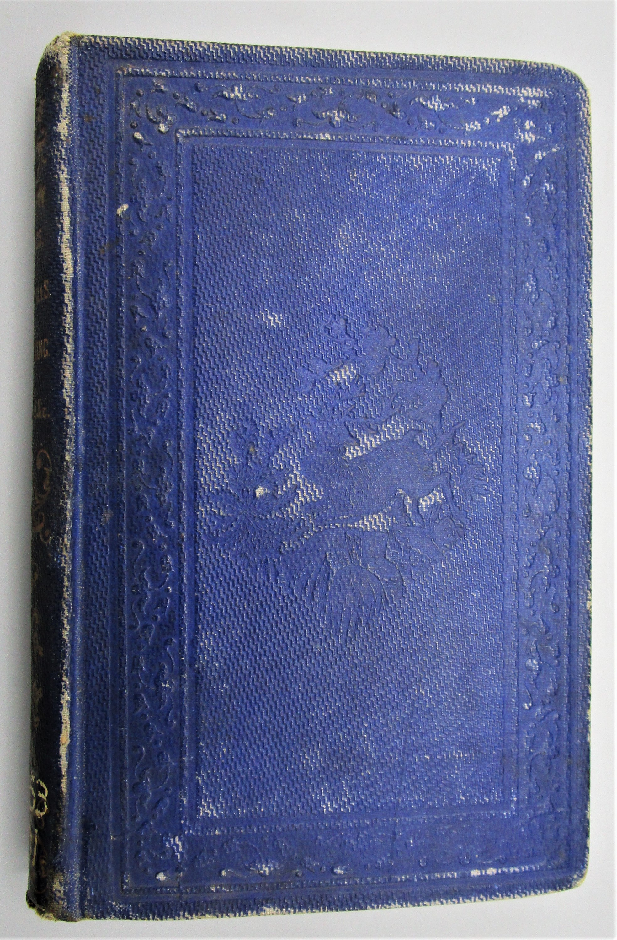 SPRINGS, WATERFALLS, SEA-BATHING RESORTS, AN MOUNTAIN SCENERY OF THE US & CANADA - 1855