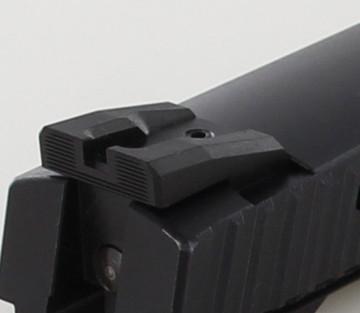 Taurus Perfect Match >> Dawson Precision CZ P09 Fixed Competition Black Rear ...