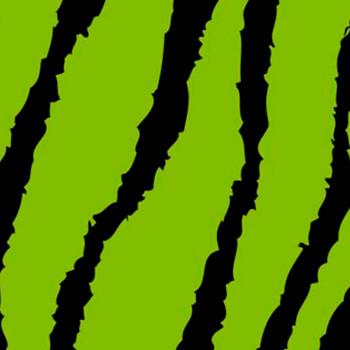 "Fashion Green Zebra 15"" x 12"""