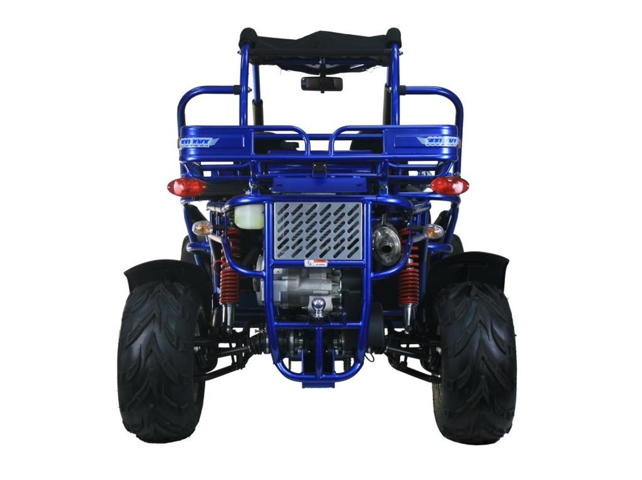 TrailMaster 300 XRX-E Go Kart - Rear