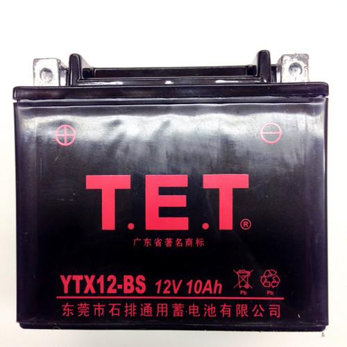 TrailMaster 300 XRS & 300 XRX Battery