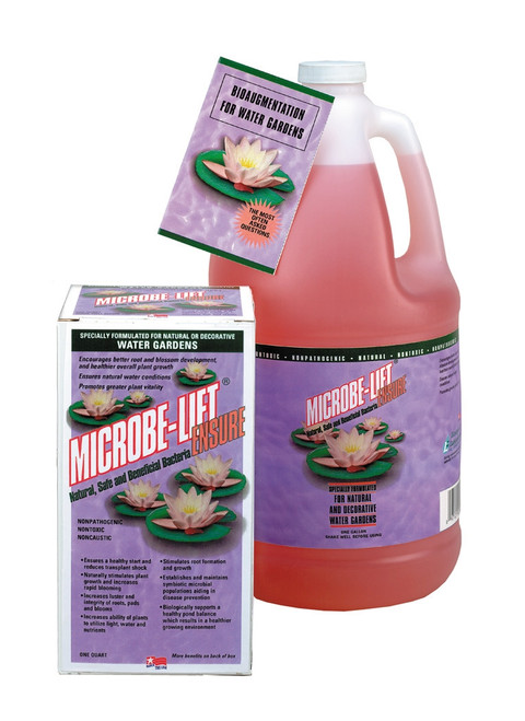 Microbe Lift Ensure Quart