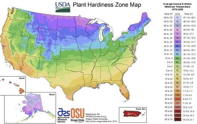 usda-hardiness-zones.jpg
