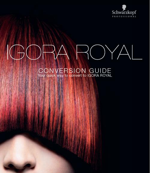 Conversion Guide