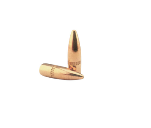 "Lightning Ammo | .224"" 55gr Bullets W/Cann - 500ct"