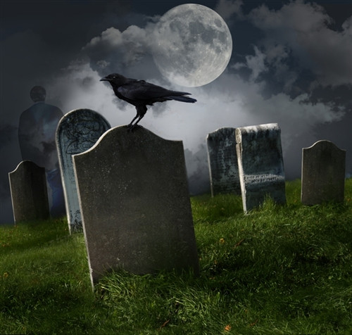 moonlit halloween graveyard backdrop