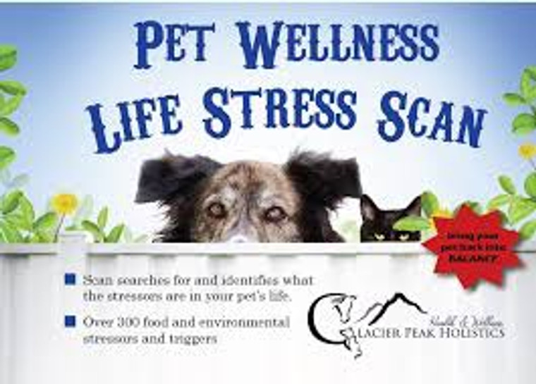 Pet Wellness Life Stress Scan