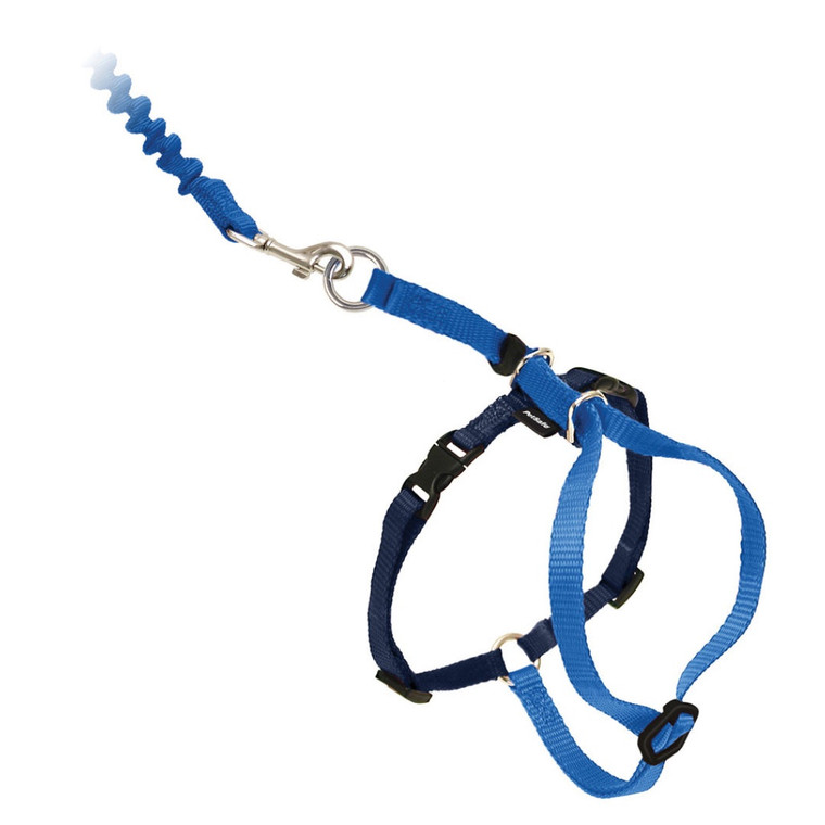 Come With Me Kitty Harness & Leash Blue