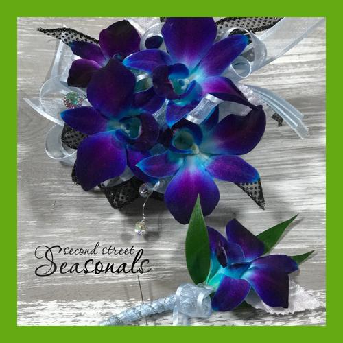 Blue Dendrobiums Corsage & Boutonnière