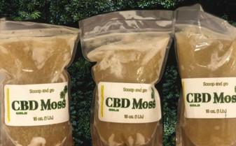 Juice Joint CBD Seamoss - 100mg