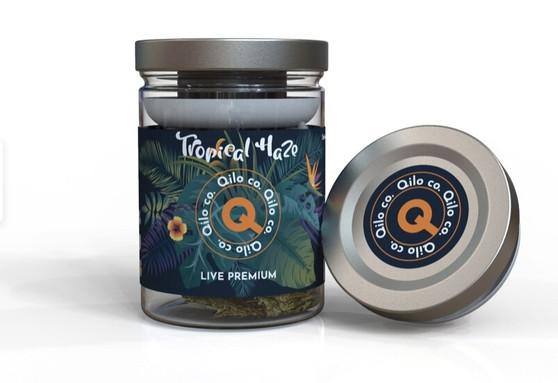 Qilo Co CBD Hemp Flower 7 grams - Tropical Haze (Sativa)