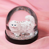 Snow Globe, Fluffy Cat