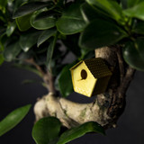 Tiny Birdhouse for your plant