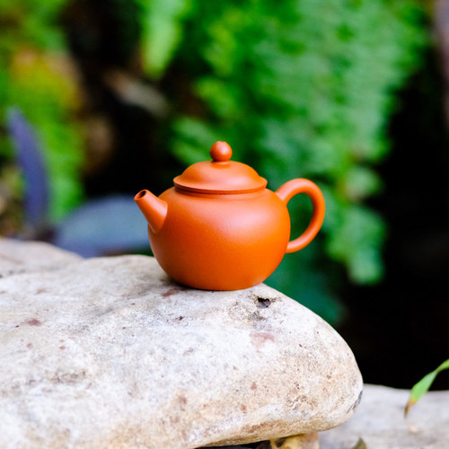 Ancient Lotus Seed Yixing Crimson Clay Teapot 古蓮子宜興朱泥茶壺