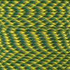 Lizard - 550 Paracord